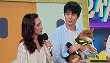 卢靖姗艾伦讲述暖心宠物故事