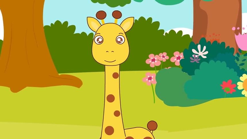 为什么长颈鹿的脖子特别长
